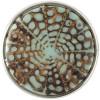 4210_conus_turquoise-seashellresin_CRI-198-01